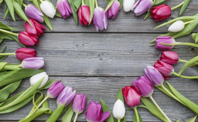 Primavera e allergie: Blossom Zine ci svela dei consigli
